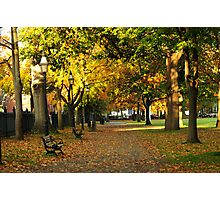 Autumn in Salem Commons Photographic Print