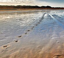 Footprints on the wet sand by Adri  Padmos