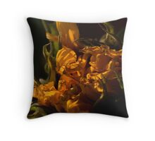 before the end Throw Pillow