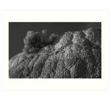 Tufa and Resiliant Sage, Pryamid Lake, NV Art Print