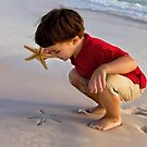 Starfish Discovery by Janet Fikar