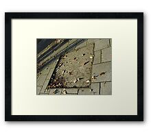 autumn quadrilateral (pavement in Fall, Burntisland) Framed Print