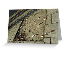autumn quadrilateral (pavement in Fall, Burntisland) Greeting Card