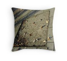 autumn quadrilateral (pavement in Fall, Burntisland) Throw Pillow