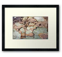 Spanish Bark 2 Framed Print