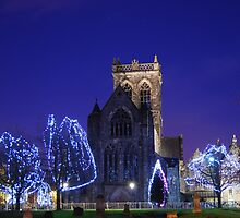 Christmas Lights at the Paisley Abbey  by clara  caulfield