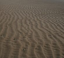 Sand Patterns at the Beach by Allen Lucas