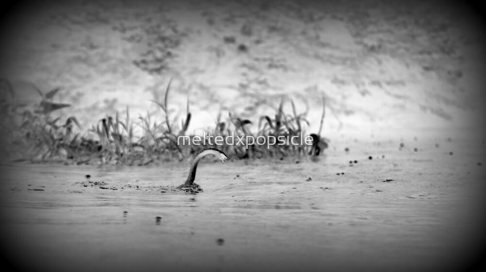 Nessie by Jessica Liatys