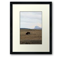 Bison and Chief Mountain Framed Print