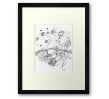 Bacteriophage ballet, ink drawing on paper by Regina Valluzzi Framed Print