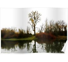 Nations Largest CottonWood Tree Poster