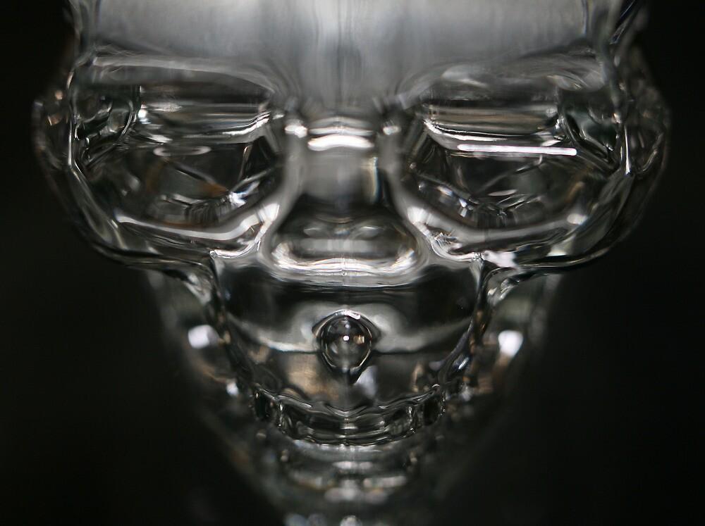 skull by jbiller