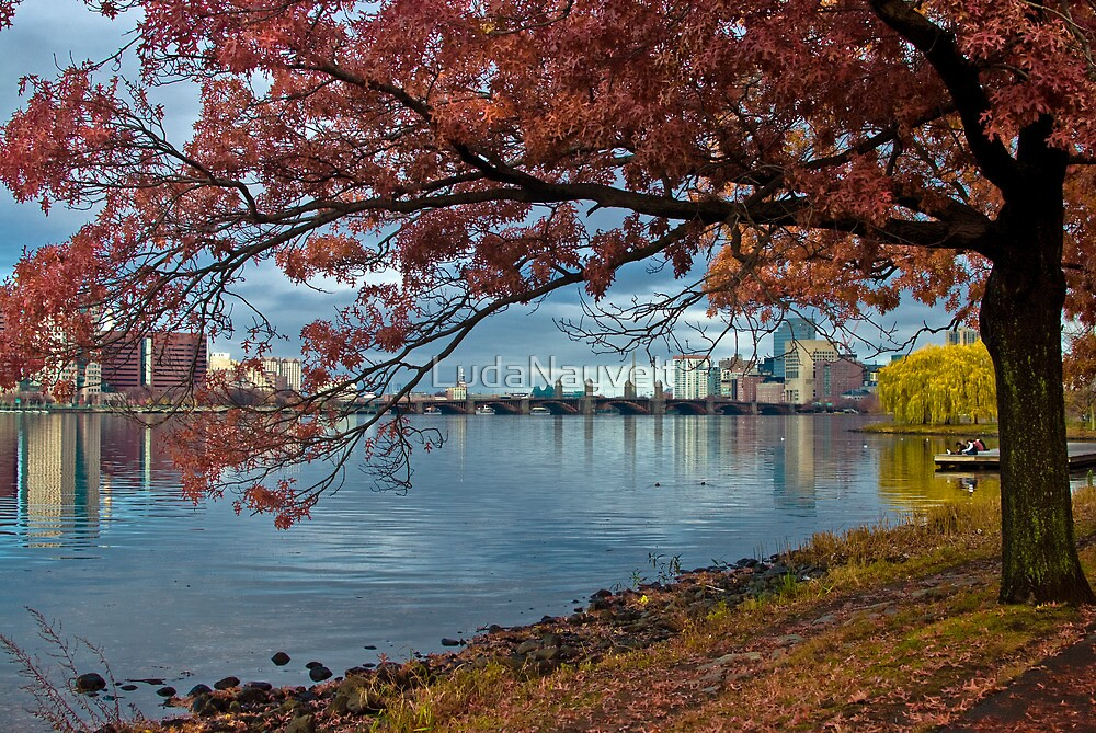 Under red tree by LudaNayvelt