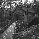 cades cove gristmill by Lloyd Sherman