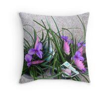 TILLANDSIA PLANTS Throw Pillow