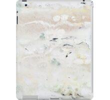 Wintry Mix  iPad Case/Skin