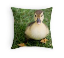 Ugly Duckling? I Think Not. Throw Pillow