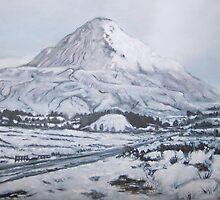 Snow scene Mayo by Barry Burke