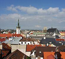 Historic Old Town of Olomouc, Czech Republic by Petr Svarc