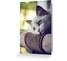 astrid, wistful Greeting Card