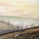 Silver Hills by Diko