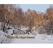 Glowing Christmas Greetings Photographic Print