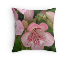 Pretty Pink Bellflowers..Macro Throw Pillow