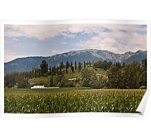 Postcard from Veneto Poster