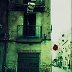 Spain Wall by sephoto