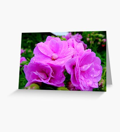 Purple rain drops Greeting Card