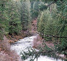 Willamette river by rusty1952