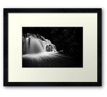 L/Dale Falls b&w Framed Print