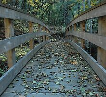 cross the bridge to better day's by michaels
