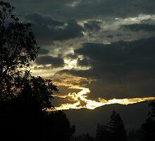 sunrise in oregon.. by michaels