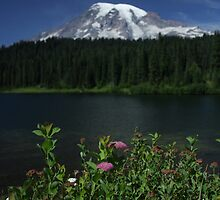 Mount Rainier  by Martin Schmidt