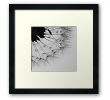 Delicate Imperfection Framed Print