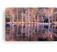 Mirror Mirror on The Land Canvas Print