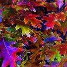 When Trees Were Wild by Dave Martsolf