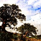 Two Trees by SquarePeg