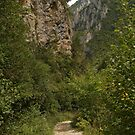 The Gorges de la Frau by WatscapePhoto