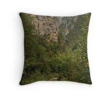 The Gorges de la Frau Throw Pillow
