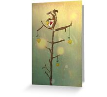Gold squirrel glide tree alone sunset Greeting Card