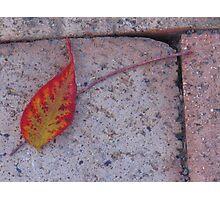 On the Sidewalk Photographic Print