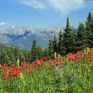 Shrine Ridge Colorado by noffi