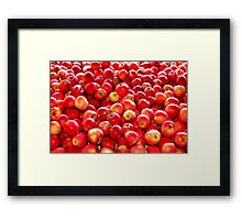 It's Flu  Season!  Eat an Apple a Day, Keeps the Doctor Away Framed Print
