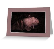 Raindrops On Japanese Peony  Greeting Card