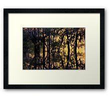 November Gold Framed Print