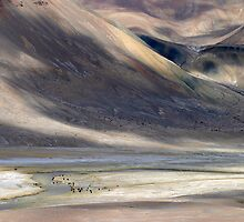 Pamirs, Tajikistan by Christopher Herwig