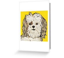 Vega - Shih Tzu Greeting Card