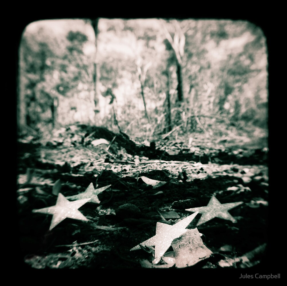 Falling Stars by Jules Campbell